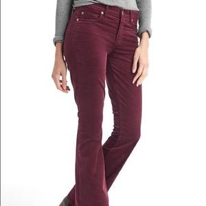 Tommy Hilfiger / Burgundy Boot Cut Corduroy Pants